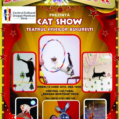 Cat Show - Teatrul pisicilor București